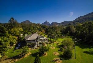 64 Mount Warning Road, Mount Warning, NSW 2484
