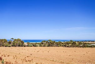 21 Cannes Drive, Sellicks Beach, SA 5174