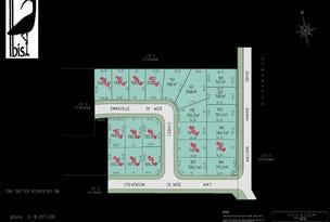 Lot 111 Ibis Estate, Orange, NSW 2800