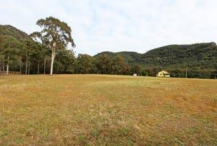 Lot 36 Milbrodale Road, Broke, NSW 2330