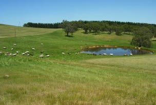 Kuitpo View, Lot 50 Blackfellows Creek Road, Prospect Hill, SA 5201