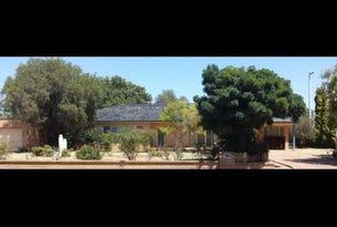 160 DANDALOO STREET, Narromine, NSW 2821
