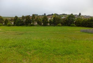 13 Melzak Way, Warragul, Vic 3820