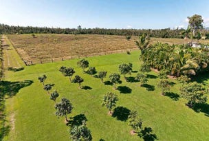 55786 Bruce Highway, Ellerbeck, Qld 4816