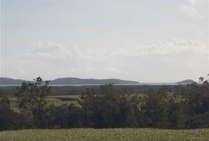 . Mt Ossa-Seaforth Road, Seaforth, Qld 4741