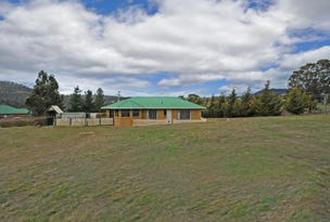 281 Briggs Road, Honeywood, Tas 7017