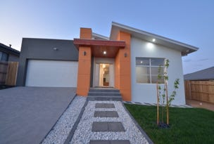 17 Ken Tribe Street, Coombs, ACT 2611