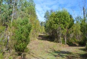 155 Old Kinglake Road, Steels Creek, Vic 3775