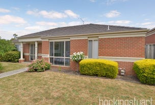17 Ashcroft Close, Hallam, Vic 3803