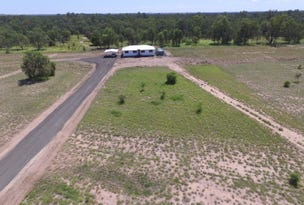 Lot 8 Echidna Valley, Emerald, Qld 4720