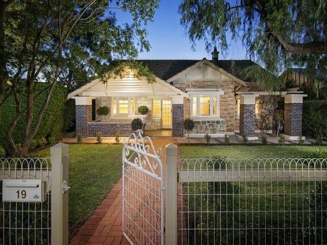 19 Brandreth Street, Tusmore, SA 5065