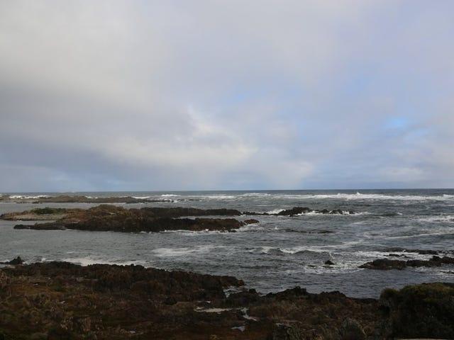 115 Couta Rocks Road, Couta Rocks, Tas 7330