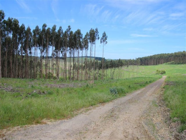 . Valley View Road, Princetown, Vic 3269
