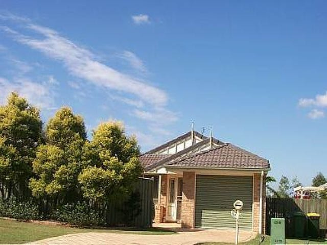 31 Oxford Close, Sippy Downs, Qld 4556