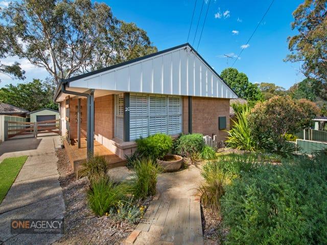 20 Cathy Street, Blaxland, NSW 2774