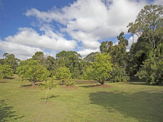 Lot 100 Curtis Road, Tamborine Mountain, Qld 4272