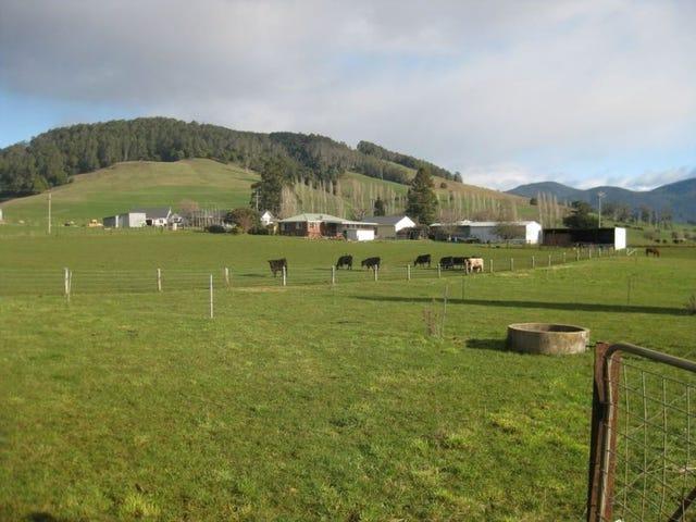 978 Gunns Plains Road, Gunns Plains, Tas 7315