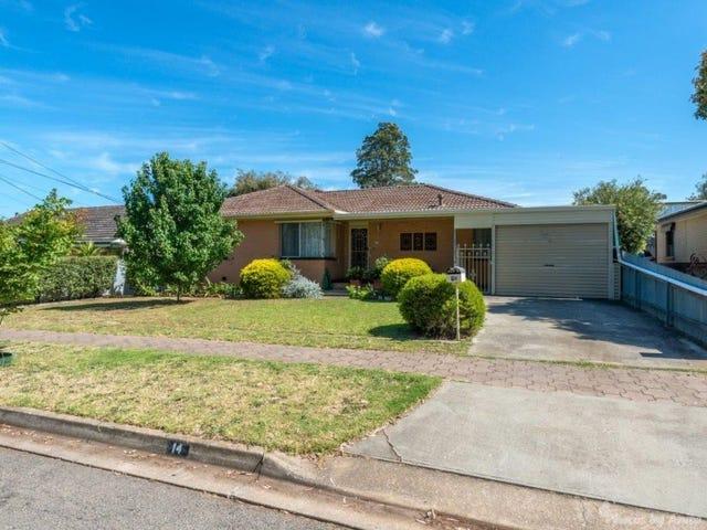 14 Lorraine Avenue, Para Vista, SA 5093