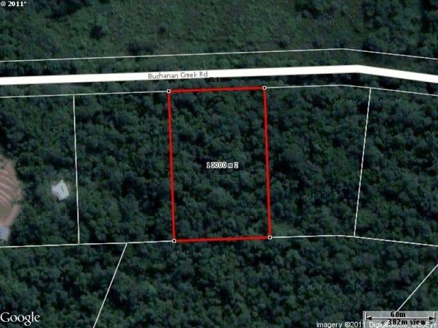 8 Buchanan Creek Rd, Daintree, Qld 4873