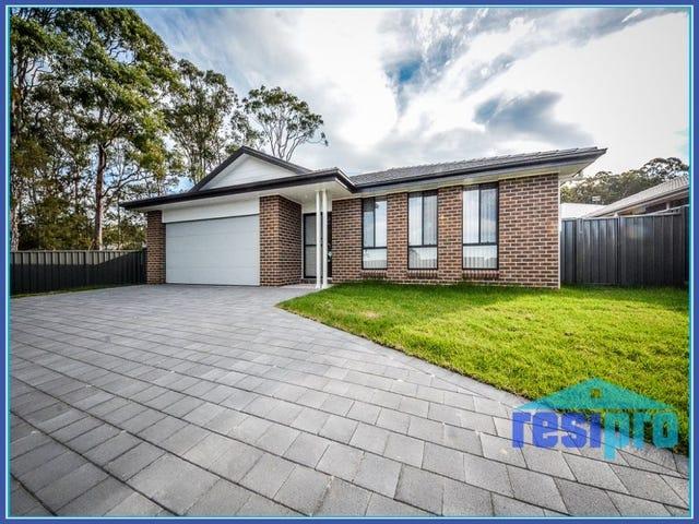 41 Billabong Drive, Cameron Park, NSW 2285