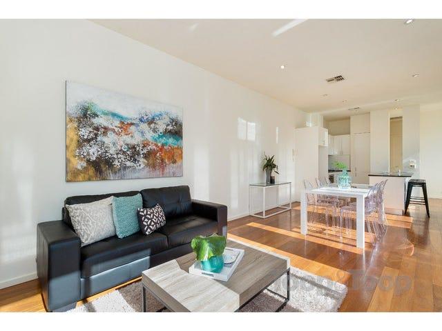 47 Walter Street, North Adelaide, SA 5006