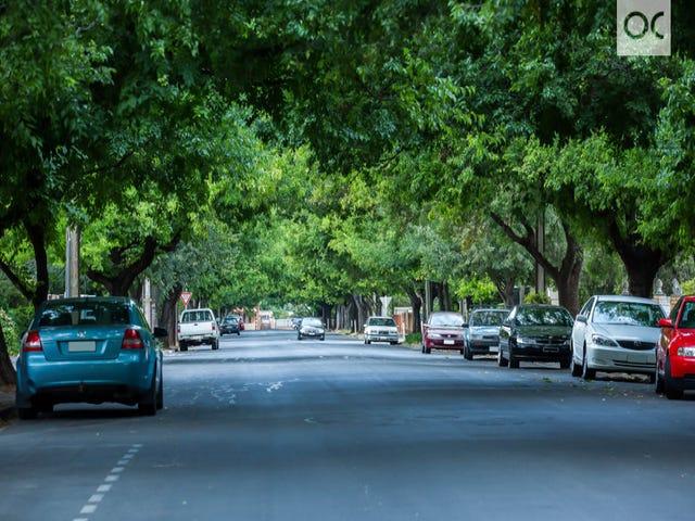 7 Adelaide Street, Maylands, SA 5069