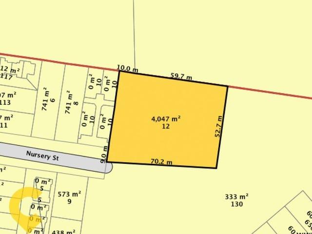 12 Nursery Street, Nundah, Qld 4012