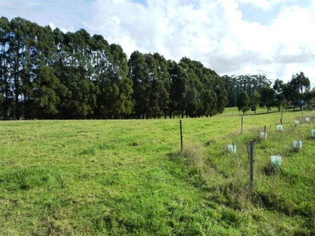 Lot 4, Oldina Road, Wynyard, Tas 7325