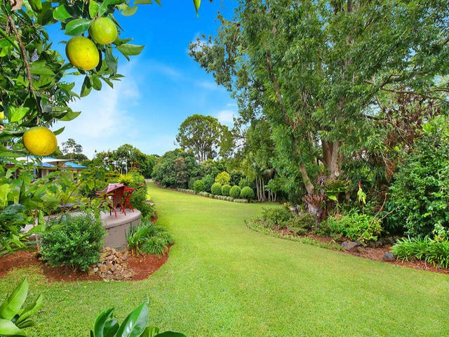 3 Cycad Place, Flaxton, Qld 4560