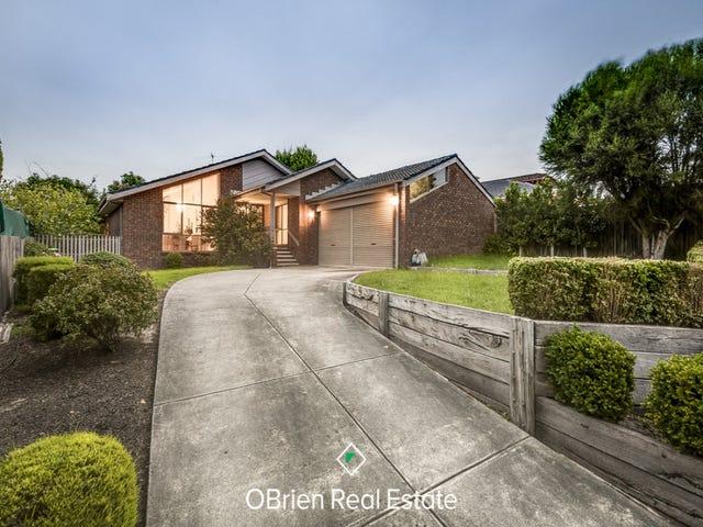 7 Sargood Court, Endeavour Hills, Vic 3802