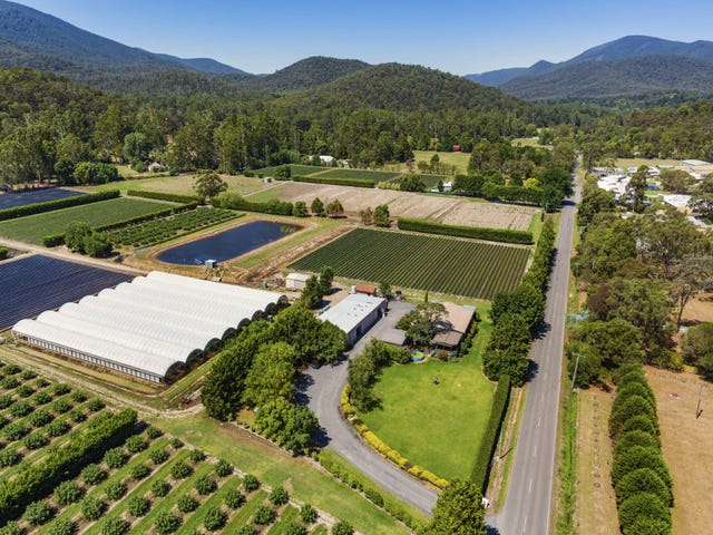 5 Camerons Road, Healesville, Vic 3777