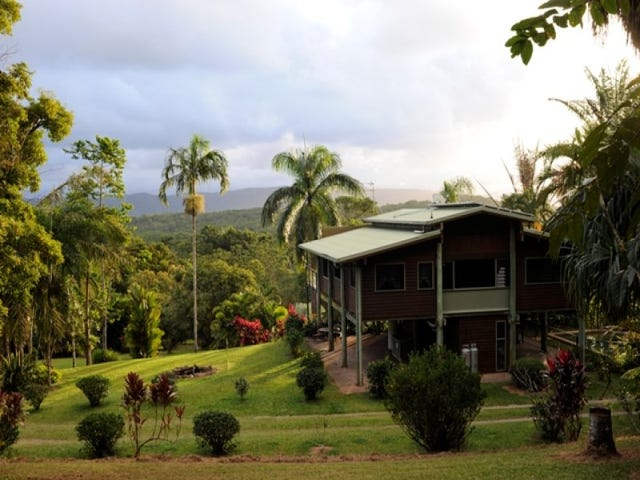 138 George Road, Forest Creek, Daintree, Qld 4873