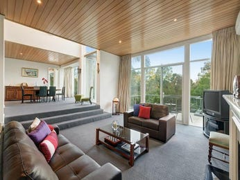 Grey living room idea from a real Australian home - Living Area photo 7045857