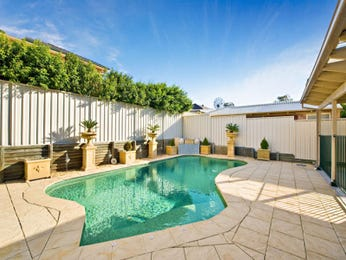Freeform pool design using pavers with pool fence & hedging - Pool photo 121659