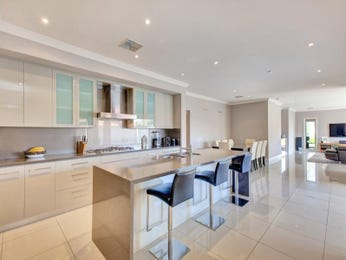 Modern open plan kitchen design using frosted glass - Kitchen Photo 15605105