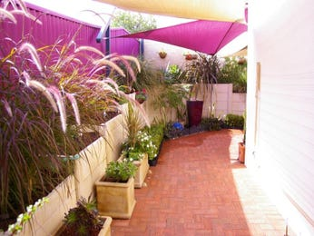 Photo of a low maintenance garden design from a real Australian home - Gardens photo 484240