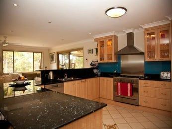 Modern kitchen-living kitchen design using glass - Kitchen Photo 133826