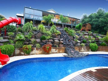 Freeform pool design using natural stone with decking & play equipment - Pool photo 250255