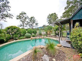 In-ground pool design using grass with bbq area & rockery - Pool photo 399638