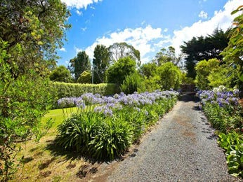 Photo of a landscaped garden design from a real Australian home - Gardens photo 881436