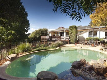 In-ground pool design using pebbles with outdoor dining & latticework fence - Pool photo 1330311