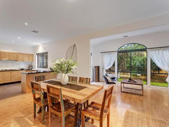 Classic dining room idea with floorboards & floor-to-ceiling windows - Dining Room Photo 8128593