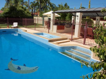 Photo of a in-ground pool from a real Australian home - Pool photo 1179747