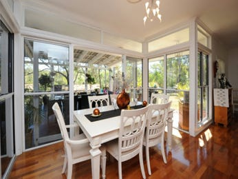 Classic dining room idea with floorboards & floor-to-ceiling windows - Dining Room Photo 775369