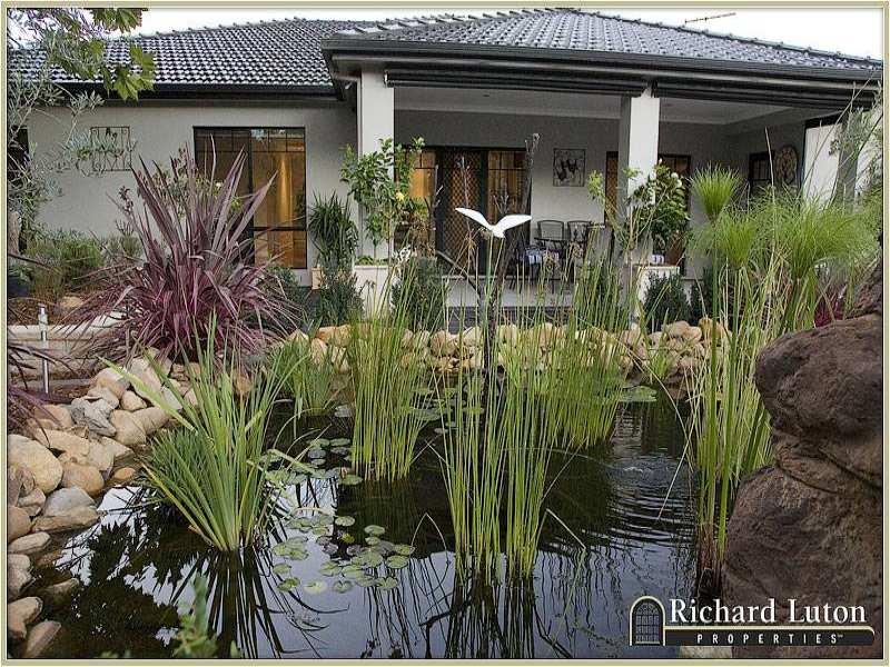 Low maintenance garden design using stone with pool & fountain - Gardens photo 349390