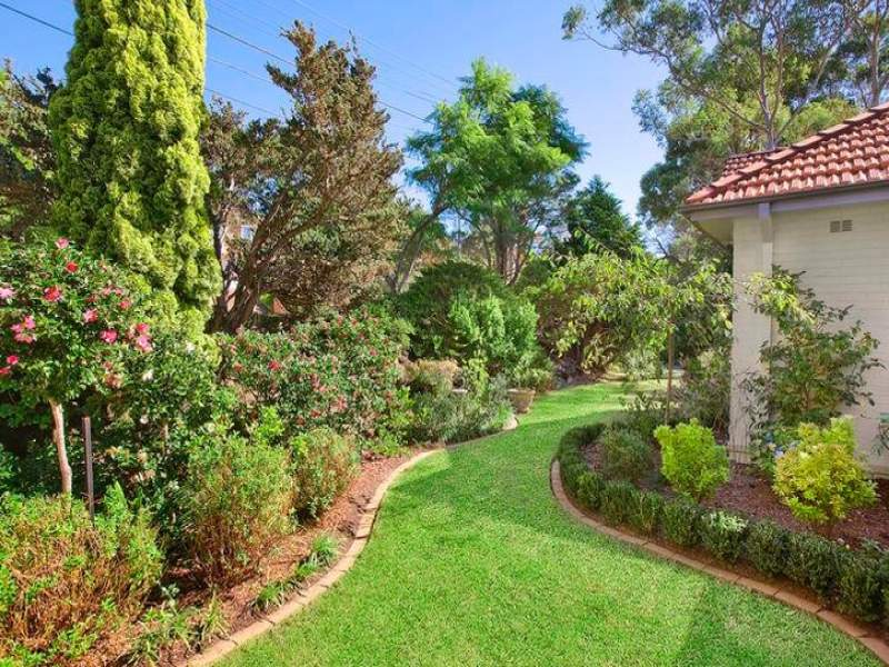 Photo of a modern garden design from a real australian for Australian garden designs