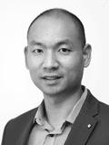 John Woon, DevelopWise