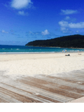 Michelle and Ross Maxwell, Noosa Sales and Property Management - NOOSA HEADS