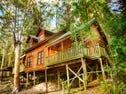 Cabin 12 Barrington Wilderness Estate 2940 Salisbury Road, Salisbury, NSW 2420