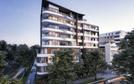 31 Bryant Street, Rockdale, NSW 2216